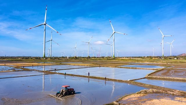Wind power sector attractive to investors construction firms