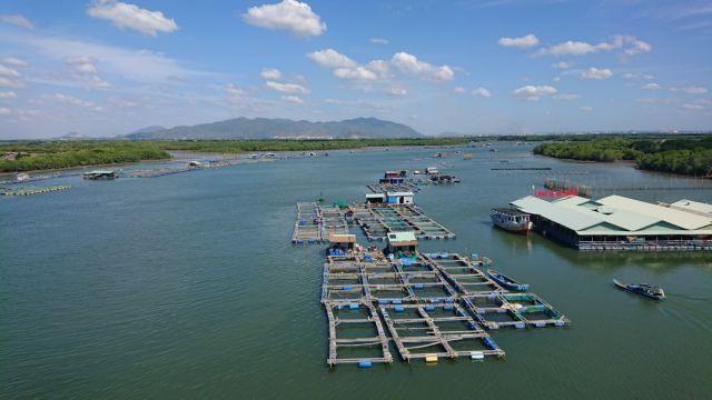 Bà Rịa – Vũng Tàu protects marine resources develops aquaculture