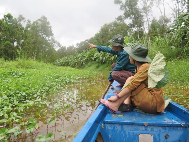 Mekong Delta provinces make efforts to preserve ecosystems