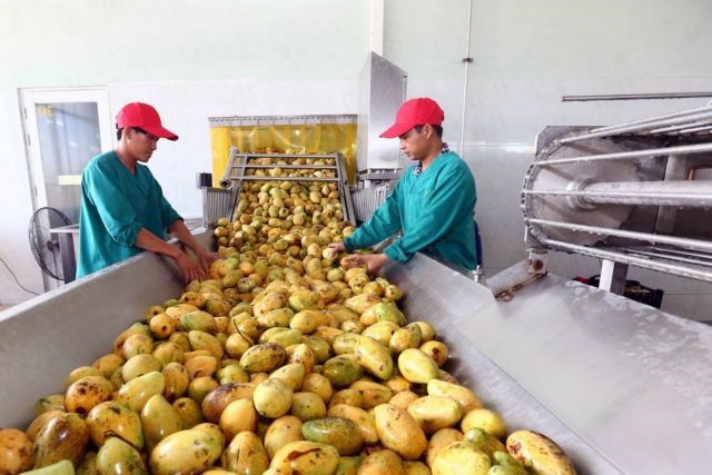 Room remains for Vietnamese exports to Russia