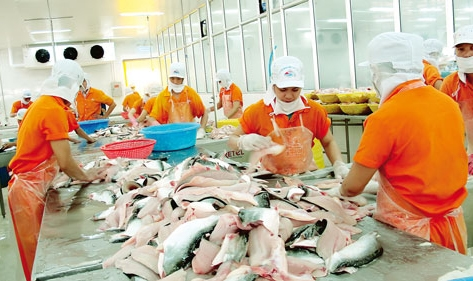 New rules for VN tra catfish imported to US