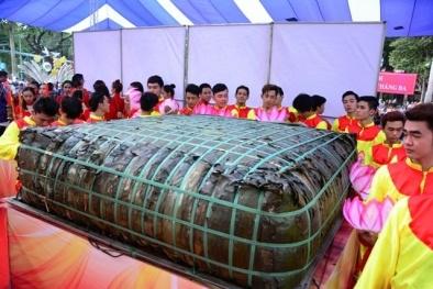 Gigantic bánh chưng cake a waste of rice