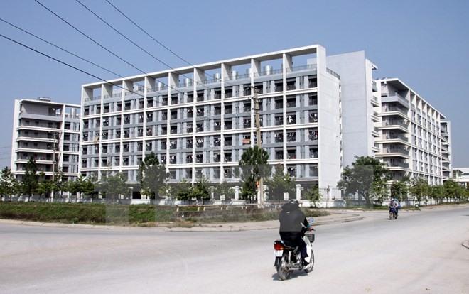 VN needs more cheap housing: VNREA