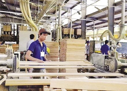 Wood consumption to rise by 10%