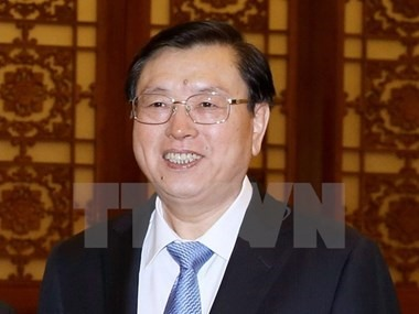 China official visits Việt Nam today