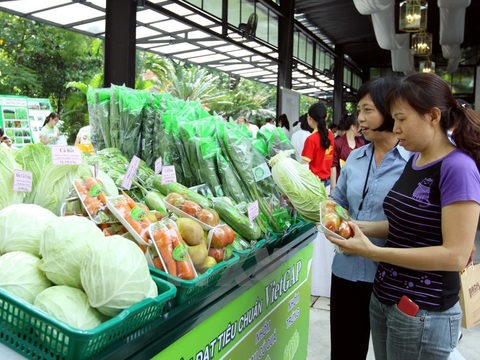 Programme for clean agriculture launched in City