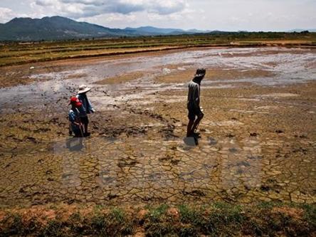 Proper irrigation alleviates water crisis