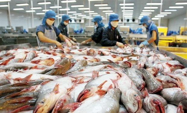 US ends catfish inspection programme