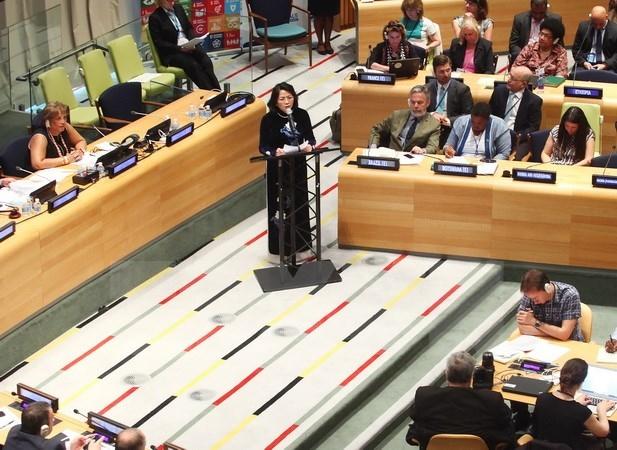 Vice President addresses ECOSOC meeting