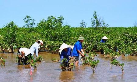 PM approves climate change green growth programme