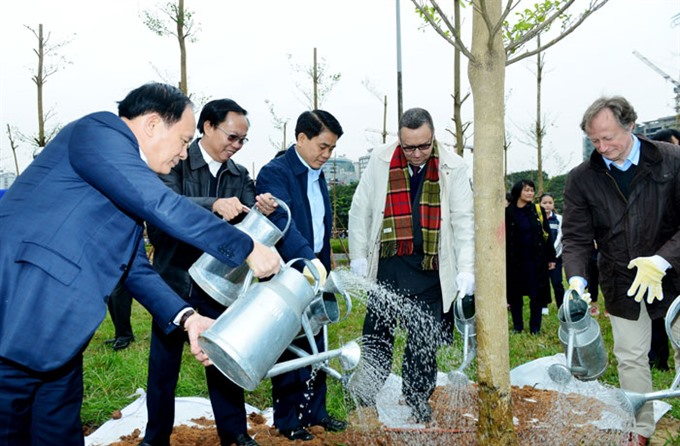 HN plants 100 trees for Finnish independence