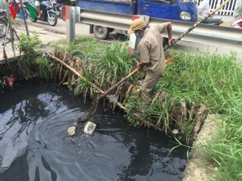 City to install environmental violation cameras