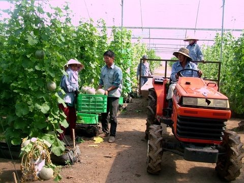 Funds needed for hi-tech agriculture