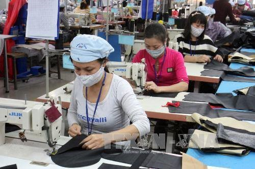 Find ways to step up EU exports VN firms urged