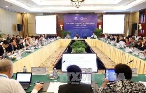 APEC discusses the internet economy