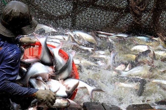 Việt Nam gains record in seafood export value in 2017