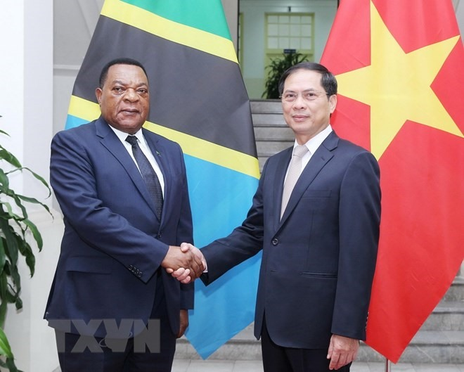 Việt Nam treasures cooperative ties with Tanzania: Deputy FM