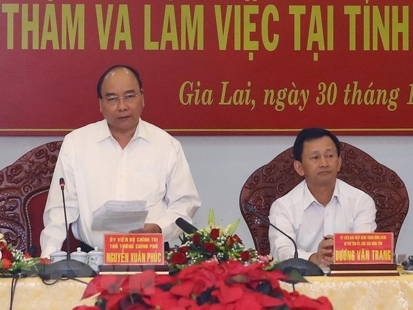Gia Lai needs to increase forest coverage: PM
