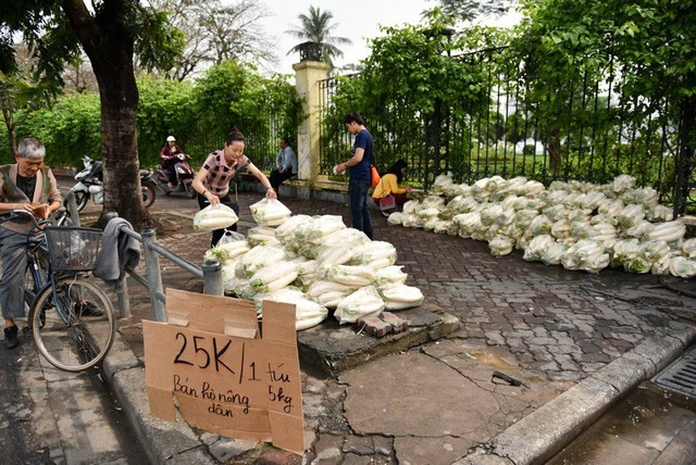 Volunteers turning up to help sell farmers turnips