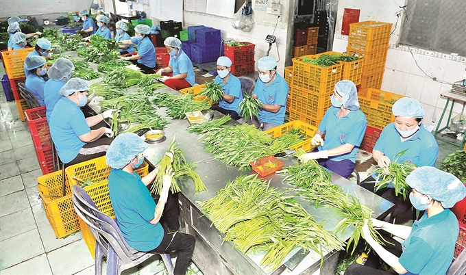 VN firms set sights on joining intl value chain