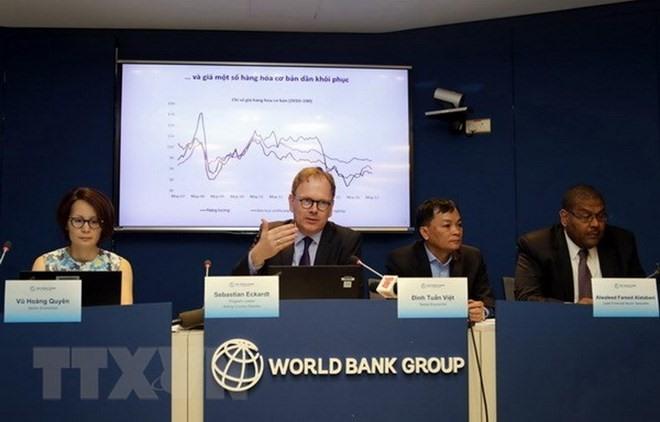 WB economist assesses FDI in Việt Nam