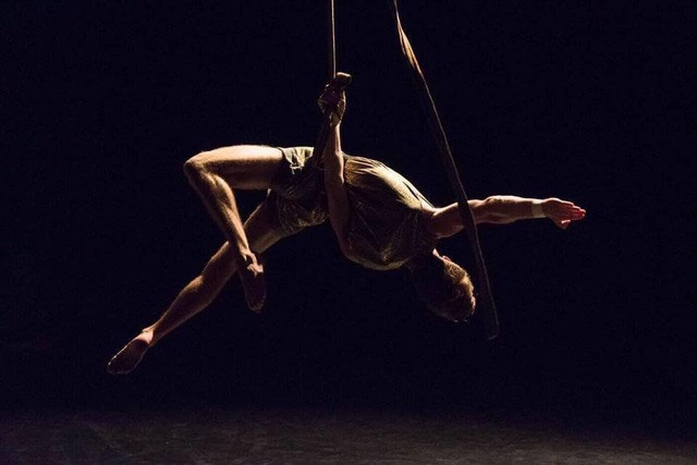 International circus festival to open in Hà Nội