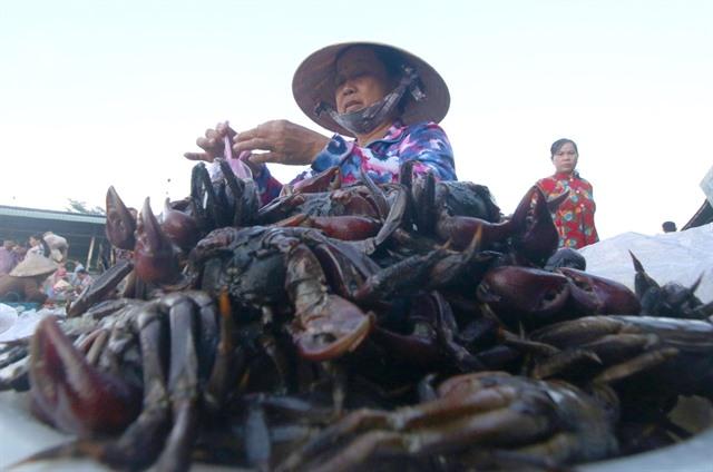 Flood season in the Mekong Delta