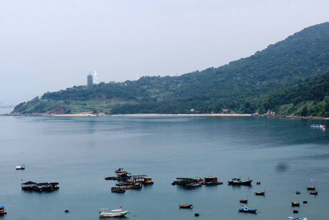 Đà Nẵng authorities at fault for several violations on Sơn Trà Peninsula