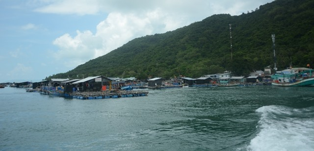 Island commune to expand floating-cage breeding of marine fish