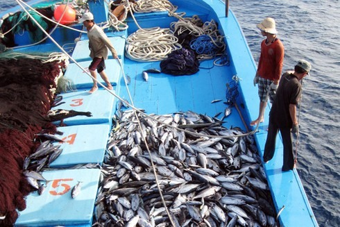 EC recognises Việt Nams improvements in combating IUU fishing