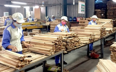 Timber industry asked to beat 11 billion in export