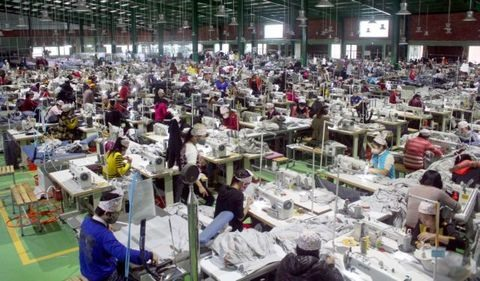 Việt Nam Netherlands look to boost economic co-operation