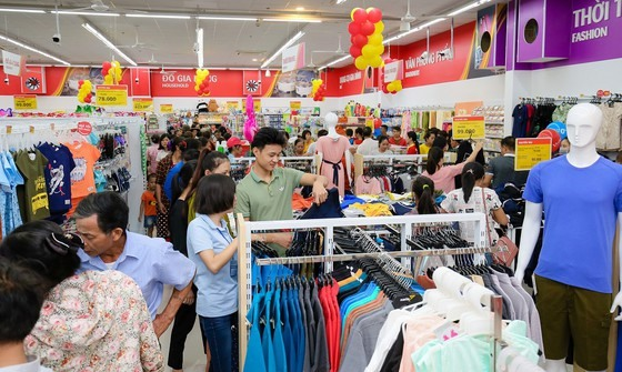 Private sector must drive economy: academic