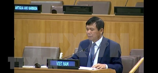 Việt Nam calls on stakeholders to work for Haitis future