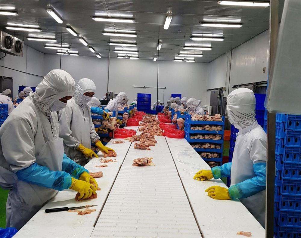 Vietnamese chicken to be shipped to Singapore Hong Kong