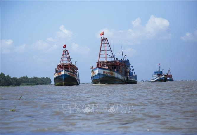 Việt Nams border guards take tougher actions against IUU fishing