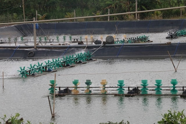Tiền Giang aquaculture area output edge up