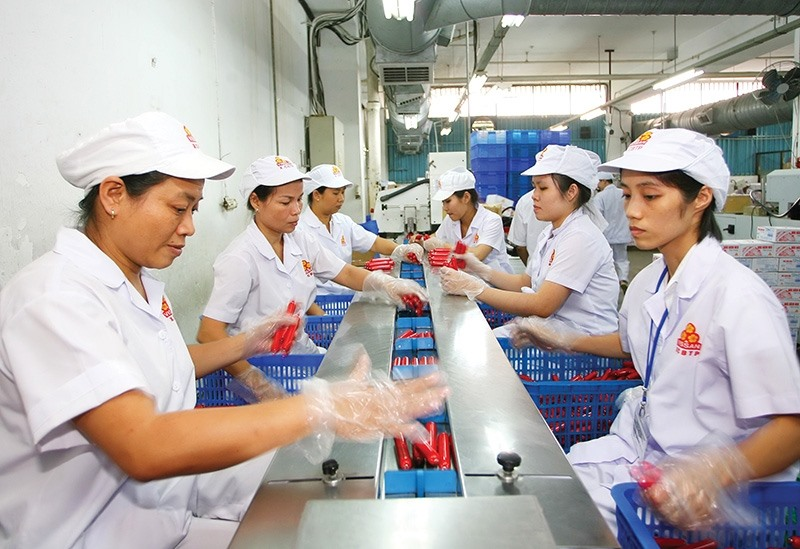 Experts gather to discusssolutions for Việt Nams economy development