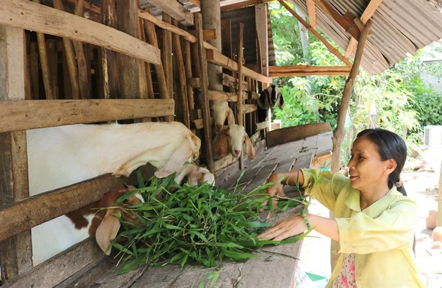 Vĩnh Long Province support programmes lift poor people out of poverty