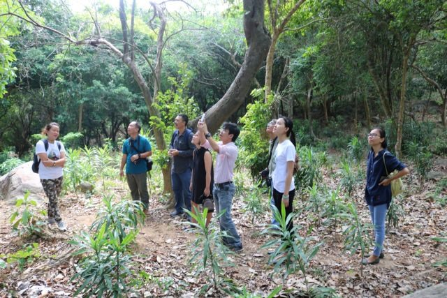 Forest school opens in Đà Nẵng