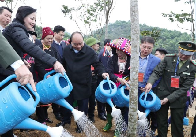 PM launches tree-planting campaign