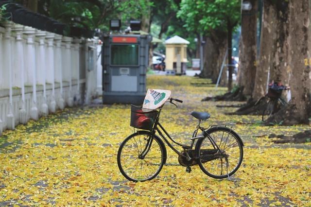Hà Nội the charming autumnal beast