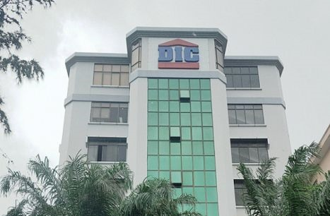 Bản Việt Securities to sell all 29.42 million shares in DIG