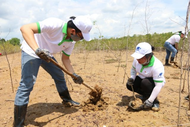 Students take the lead in environmental protection activities