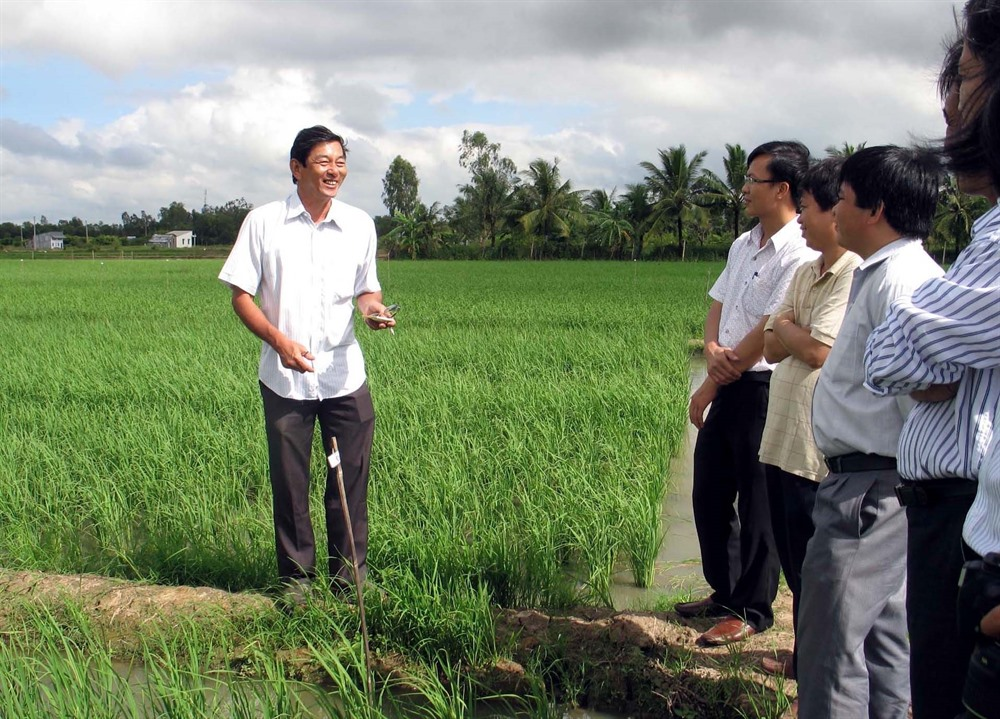 Việt Nams rice crowned the best at 2019 World Rice Conference
