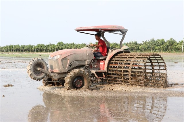 Rice farms in Đồng Tháp fully mechanised