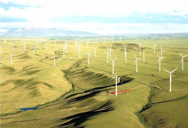 Hapaco eyes investment in VNĐ4-trillion wind power project
