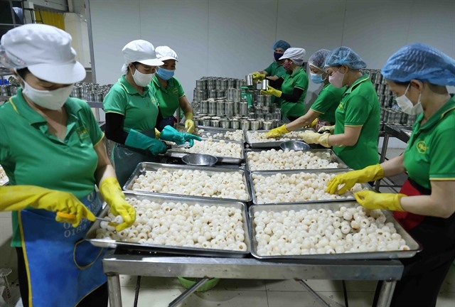 Export of vegetables and fruits continues to climb in four months despite pandemic