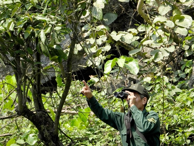 Man goes from poacher to forest guardian