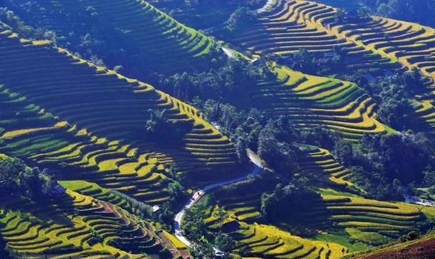 Hà Giang Culture and Tourism Week to honour Hoàng Su Phì terraced fields